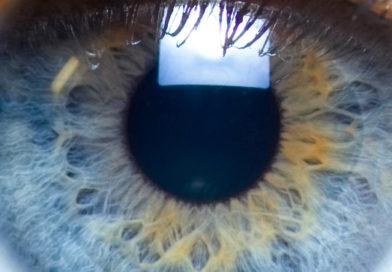 Iris-close-up-eye
