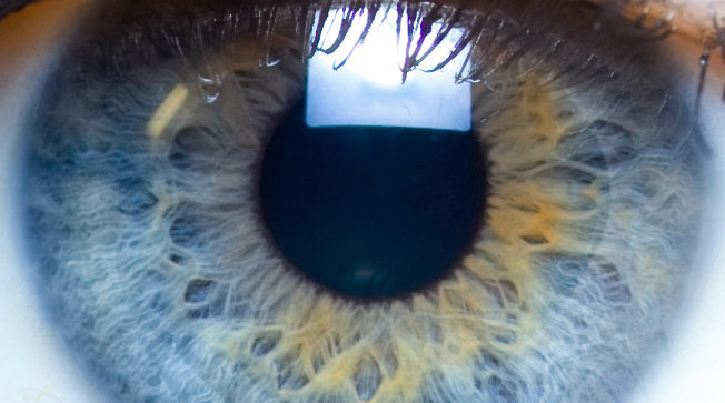 Iris-close-up-eye